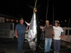 crew with bluefin tuna